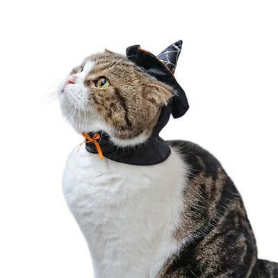 NEW Pet Dog Cat Halloween Costume Clothes Witch Hat Cosplay Gift