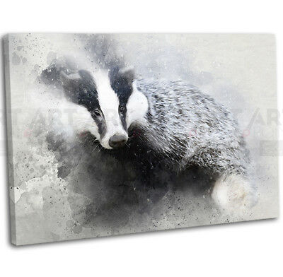 Badger Abstract Watercolour Canvas Print Framed Animal Wall Art Picture