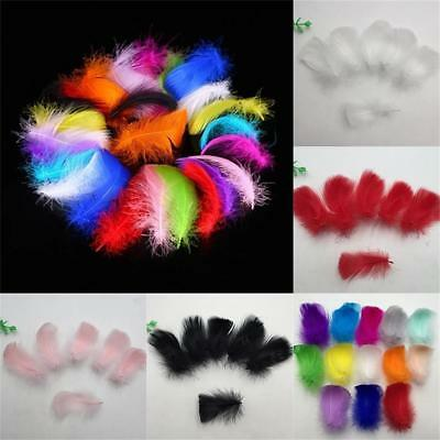 500 pcs Feathers Sewing Craft Wedding Home Party Decorations