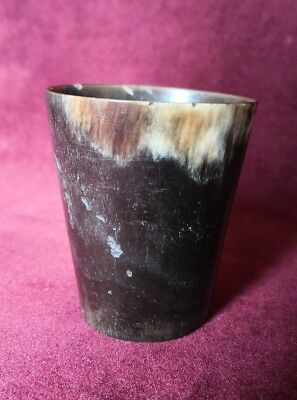 Antique Scottish Glass Bottomed Cow's Horn Hunting Beaker Cup Tot - 6cm High