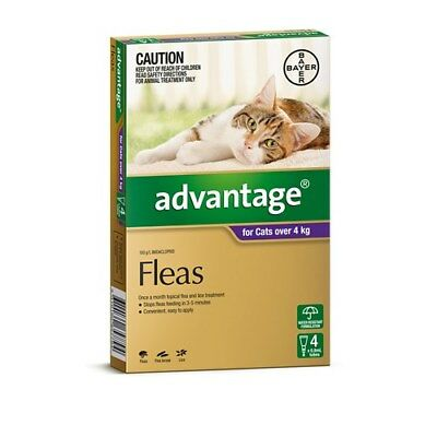 New Advantage Flea Treatment for Cats over 4kg Pack of 4