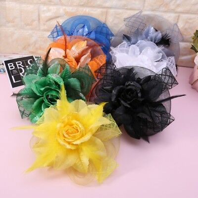 Womens Fascinator Hat Feather Hair Clip Party Shiny Flower Veil Headband Party