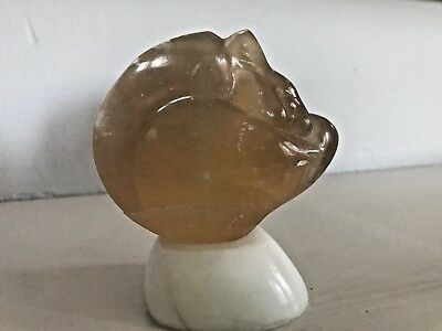 Hand Carved Squirrel in Red Agate Statue Figurine