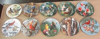 Set of 9 Knowles Bird Plates by Daniel & Driscoll & Thornbrugh & 1 WWF by band