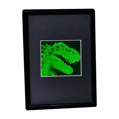 T- Rex Head 2-Channel Hologram Picture FRAMED, Collectible Hologram Picture