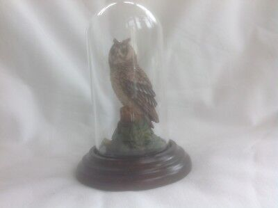 Country Artists Long Eared Owl under Glass Dome 1989 vintage figurine