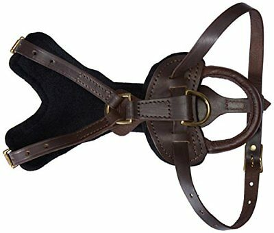 Viper Typhoon Multi-Function Leather Dog Pet Harness Black or Brown For Large Do