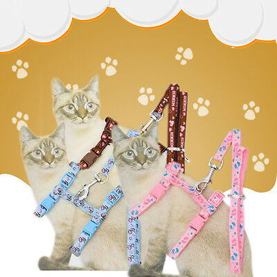Pet Small Dog Puppy Cat Rabbit Kitten Nylon Harness Collar Leash Lead Pop Pro~