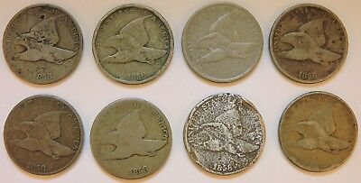 Lot of 8 1858 Flying Eagle Cents - A10