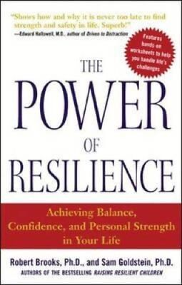The Power of Resilience by Robert Brooks 9780071431989 (Paperback, 2004)