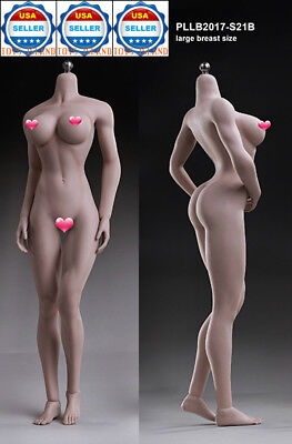 VERYCOOL 1//6 Female Seamless Body Arm Figure Suntan Large Breast FX05 B ☆USA☆