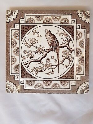 Stunning Bird Feature Design Victorian Tile. E. Smith, Coalville.