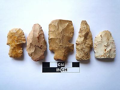 Native American Arrowheads x 5, Genuine Archaic Artifacts, 1000BC-8000BC (976)