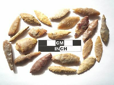 20 x Leaf Style Neolithic Arrowheads - 4000BC - (983)