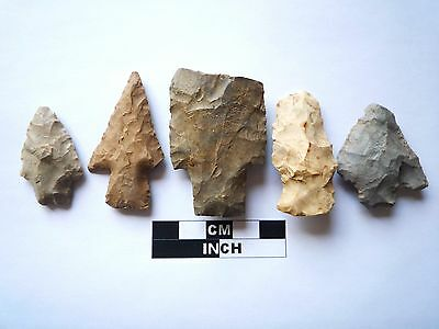 Native American Arrowheads x 5, Genuine Archaic Artifacts, 1000BC-8000BC (969)