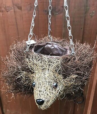 Hedgehog | Hanging Basket| Medium |  12 Inch | *brand New*