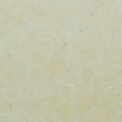 Sample of Jerusalem Hebron Shellstone Limestone Wall /& Floor Tiles