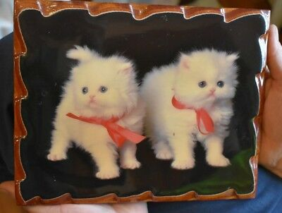 Vintage Puffball White Kittens Enamel Carved Wood Picture Cute + Kitschy