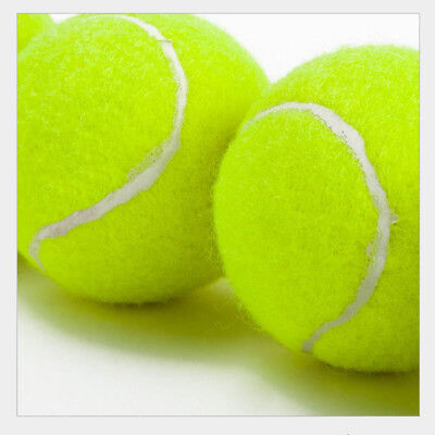 General Training Tennis Balls Sport Unisex Yellow 5pcs Ball Pack Pet Playing Toy