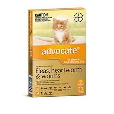New Advocate Cat Bayer 0-4KG Small Pack of 3 Orange
