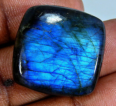 Natural 'Deluxe' Blue labradorite Cabochon Gemstone Cushion 55.15cts.;#81631
