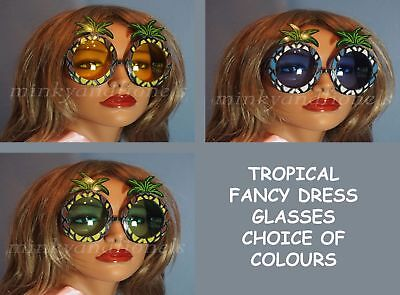 Tropical Pineapple Hawaiian Fancy Dress Sunglasses Novelty Stag Do Hen Party