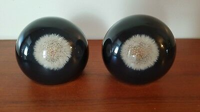 Dandelion Puffball Bookends Paperweight Lucite Acrylic Flowers -Poly Quartz - CA