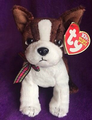 "Boston Terrier Ty Beanie Baby ""sport"" With Tag"
