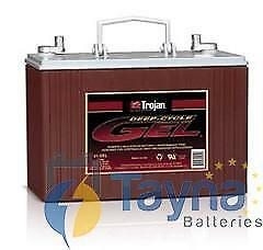 Trojan Batterie 31-GEL 102Ah Deep Cycle Batterie