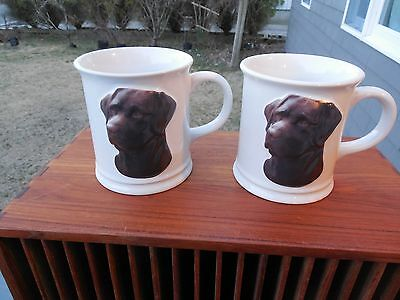 Pair Of  Chocolate Labrodor Dog  Cups