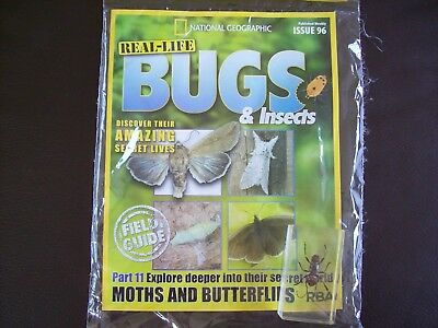National Geographic Real-life Bugs & Insects magazine Issue 96