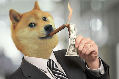 Doge Coin mining contract @ 24-Hour Dogecoin Free Ship NR zelo vero خلية Crypto