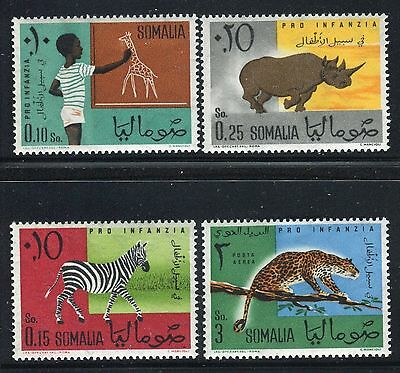 Somalia 1960 For Childrens/animals/wild/drawing/giraffe/zebra/rhinoceros/leopard
