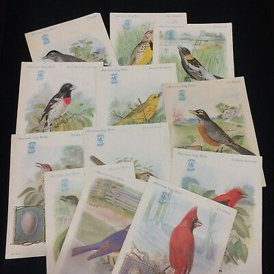 12 SINGER SEWING MACHINE Advertising Cards~American Song Birds 1920s Trade Cards