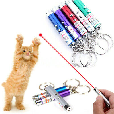 2-in-1 Laser Lazer Pen Pointer Keychain Keyring With torch Cat Dog Toy