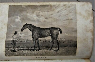 1822 race horse engraving of Derby winner MOSES in THE SPORTING MAGAZINE