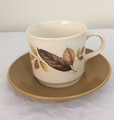 JOHNSON OF AUSTRALIA Cup & Saucer Set AUTUMN LEAVES Very Good Condition