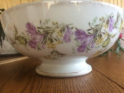 antique german TOM AND JERRY eggnog punch bowl fruit crocus spring flowers blue