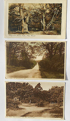 Group of Three Vintage Postcards New Forest Family History OLVES and BEARNES