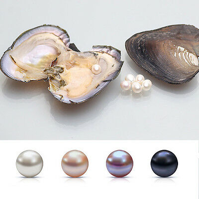 1pcs heart natural baroque mother of pearl shell clam display Unique
