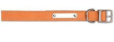 "Ancol Heritage Sewn Leather Dog Collar Tan 20cm-26cm Puppy Size 1 12"" Small"