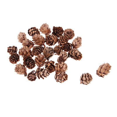 30 Pcs Mini Natural Dried Pine Cones for Christmas Tree Hanging Decoration