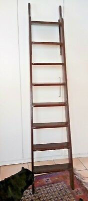 Period 6ft library ladder, thin bookcase, trendy towel or shoe rail - DELIVERY