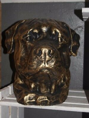 Rottweiler Kopf/Büste  Resin Gold/Bronce Optik