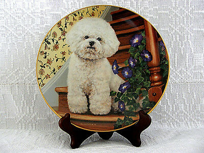 Bichons Frise ~ Stepping Up ~ Danbury Mint Plate & With Wooden Plate Stand