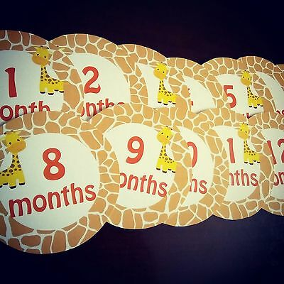 Giraffe Monthly baby stickers. MBMS000005