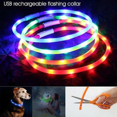 USB Rechargeable Pet Dog Collar LED Flashing Light Up Safety Belt Waterproof_