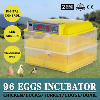 96 Eggs Automatic Incubator Hatcher Multifunction Observation Hygrometer POPULAR