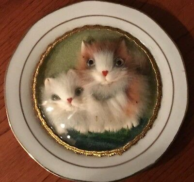 Vintage 3D Fuzzy Kittens Under Glass Dome On White Plate Gold Trim Made in China