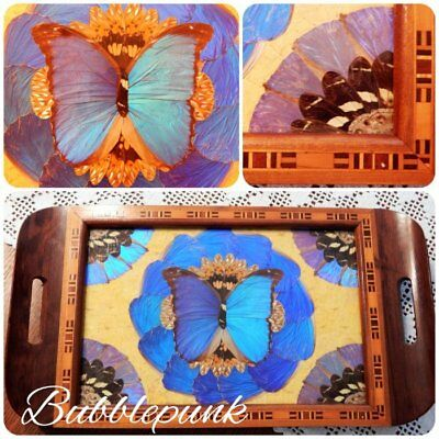 Vintage Iridescent Butterfly Wing Art Wood Inlay Glass Top Tray